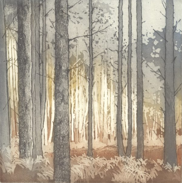 Tunstall Forest etching